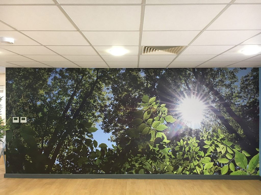 Kings centre Oakham Wall Graphics